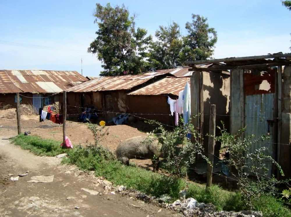 Manyatta Estate In Kisumu Macleki. Sanitation Facility In Manyatta. Wiring. Diagram Of A House A Manyatta At Scoala.co